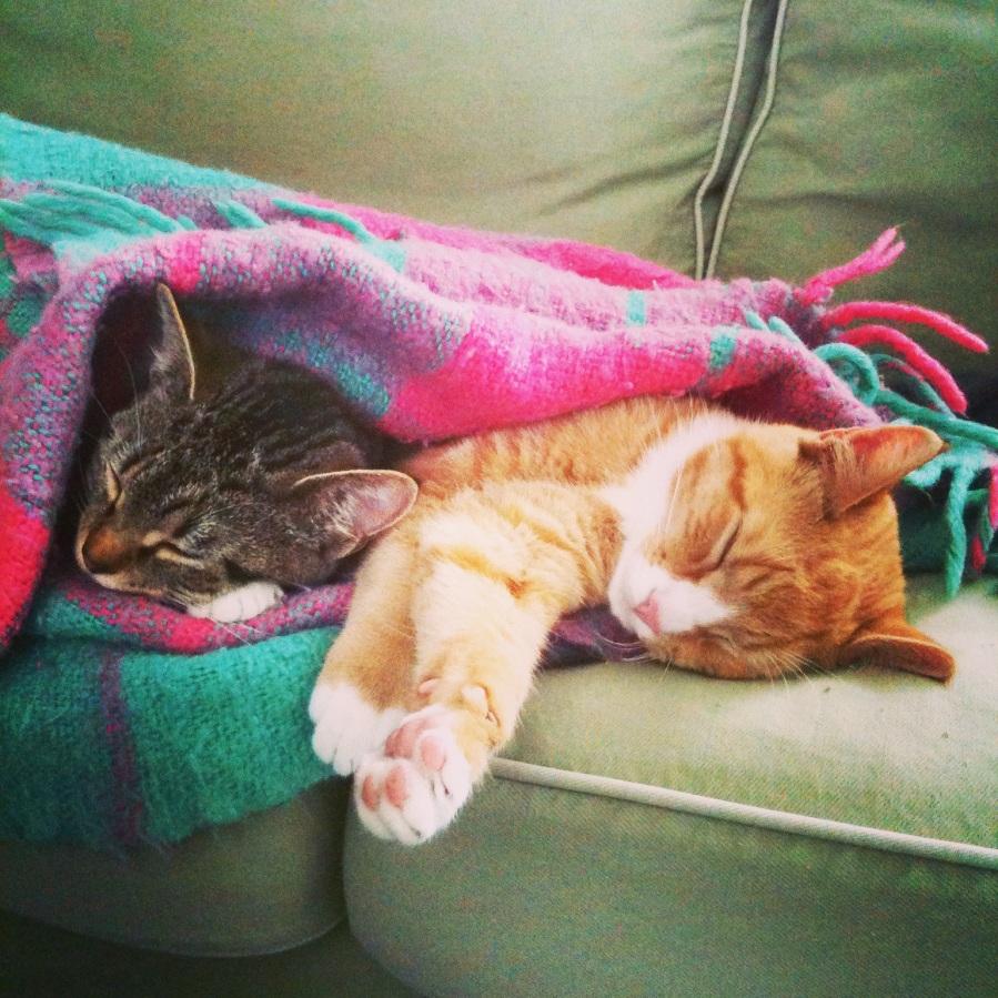 Jack and Suki
